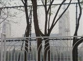 National Gymnasium, obscured by the fence and the haze: by enanareina, Views[333]