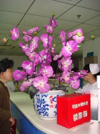 A big bouquet of purple orchids would sure make me happy!
