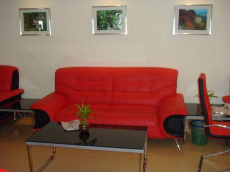 Fancy modernistic couch in the VIP lounge