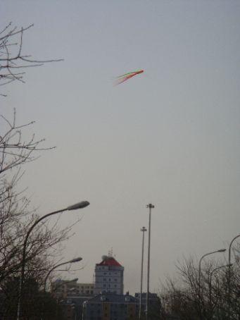 Kites flying in park across from Tiantan Hospital