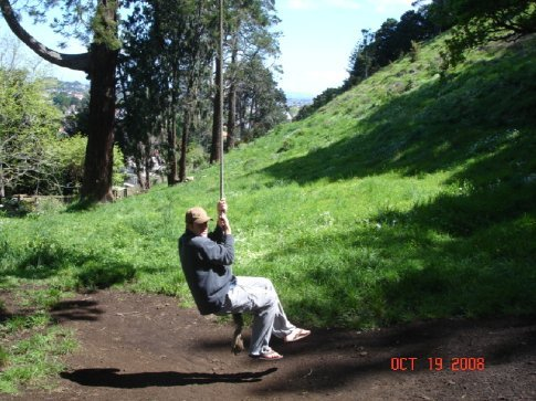 Near the top of Mt. Eden we found a swing.