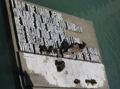 A little ducky family on one of the art pieces around Wellington.
