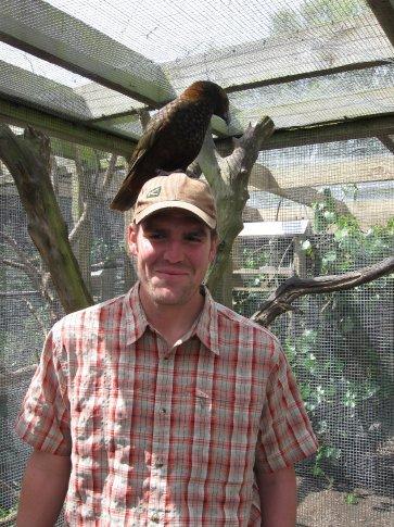 At the bird sanctuary - a kaka on Pete's head.