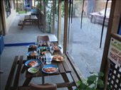 A staff dinner of sushi and pizza.: by erin_and_pete, Views[170]
