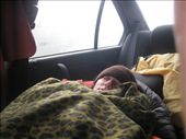 Sleeping in the car in Arthur's Pass: by erin_and_pete, Views[168]