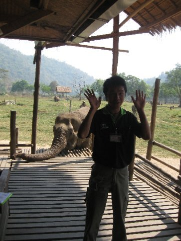 The following pictures are from the Elephant Nature Park in Chiang Mai.  No chains and elephants have 50 acres to roam.  This is our tour guide, Chet.