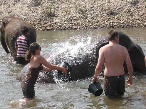 We get to splash the happy elephants