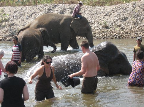 I think I was trying to get away when I noticed some of the elephants rolling in the water