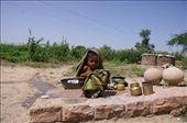 Bishnoi Village: by escapismus, Views[88]
