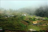 A morning at Kundasang village and common population people here working as farmers. It's located at district of Sabah, called Ranau.  : by eshuhaida, Views[268]
