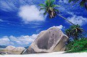 Travel Header Nature: by evamodel178, Views[224]