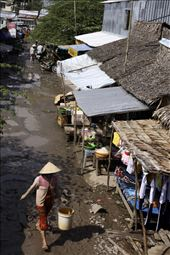 Early morning in Southern Vietnam we head to a local market to see what native wildlife is available to purchase for consumption. This market is situated close to U Minh Thuong National Park. The park has been flooded to prevent bushfires. This has forced many of the wildlife out into the surrounding farm lands where they are being poached for food. Not only are they sold at local markets but are also part of the demanding wildlife trade in China.: by eyefornature, Views[164]