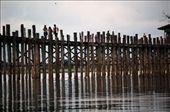 U Bein bridge, Anamapura : by fabio_costarelli, Views[230]