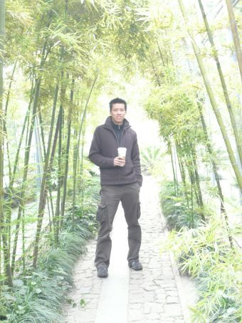 China's famous bamboo... its everywhere!