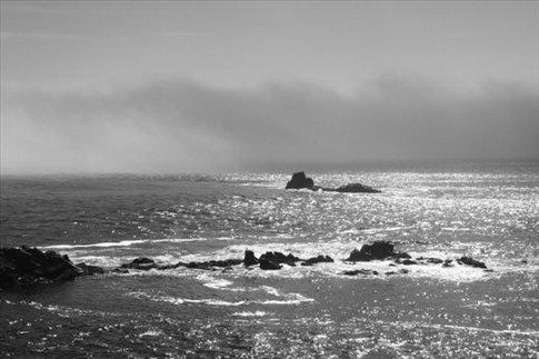 Fog bank, Maine coast