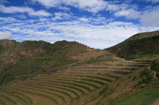 Agricultural terraces, Pisac