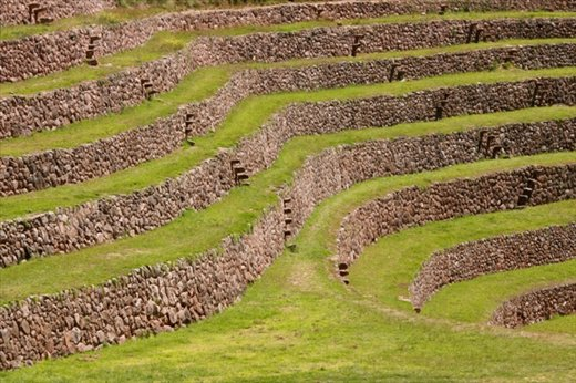 Terraces and Inca steps, Moray