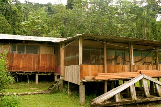 Lodge on Rio Madre de Dios