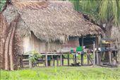 Home Sweet Home, Patria Nueva: by fieldnotes, Views[228]