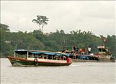 Laguna Yarinacocha: by fieldnotes, Views[128]