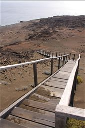 Boardwalk on Bartolome- Galapagos Islands: by fieldnotes, Views[97]