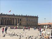 Plaza Bolivar: by finally, Views[170]