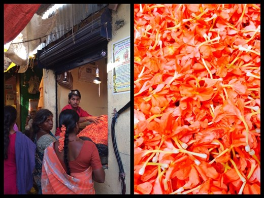 Fleurs que les femmes mettent dans leurs cheveux ou donnent en offrande aux dieux hindous dans les temples.