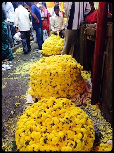 Fleurs que tu achètes au mètre.