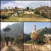 Lors de notre rando, nous observons la vie paisible des népalais des campagnes. On se demande comment les femmes transportent ces fardeaux sur le dos en grimpant et descendant  les collines. Elles sèchent le maïs dehors devant chez eux comme on peut voir sur la photo. Où sont les hommes?!? ;-): by finally, Views[232]