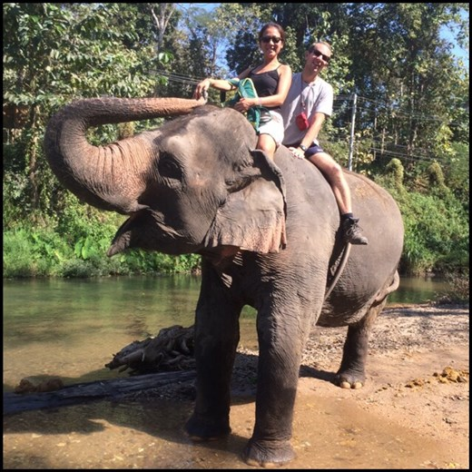 Bareback elephant ride. Not so comfortable! And rather scary, you always feel like you're going to fall off!