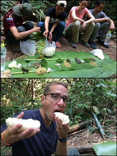 Lunch time in the jungle. First time in this round the world trip, we eat with our hands. Luckily the rice is very sticky!