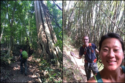 Trekking through the jungle and then a bamboo forest.