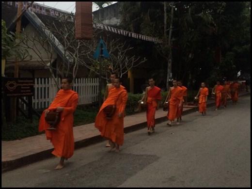 Moines après moines défilent dans les rues de Luang Prabang entre 6h et 7h du matin pour la