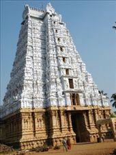 Trichy. Gopura (torre) principal del Templo Sri Ranganathaswamy (Templo a Vishnu) : by flachi-gus, Views[452]
