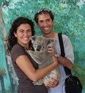 Uluru Sir Arhtur y un koala en el zoo donde trabaja Adam: by flachi-gus, Views[246]