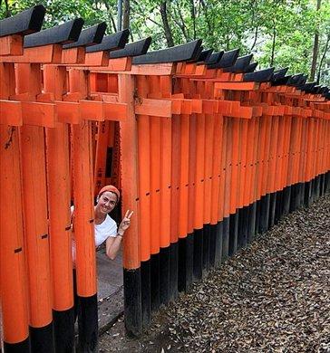 Templo shionista dedicado al dios del comercio (cada torii o puerta naranja fue donada por un comerciante o empresa) Hay 4 km de toriis