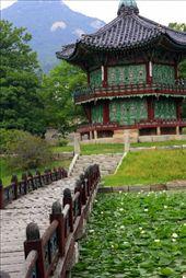 palacio de Gyeongbokgung: by flachi-gus, Views[226]