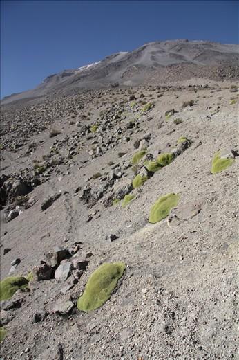 Trekking El Misti by Arequipa