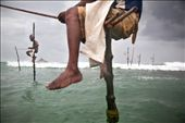 Stiltfishermen sit on their inherited poles in the bay of Ahangama and fish.: by florianmueller, Views[370]