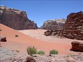 Wadi Rum. Stunning colours. A magical place. : by flyingpiglet, Views[2994]