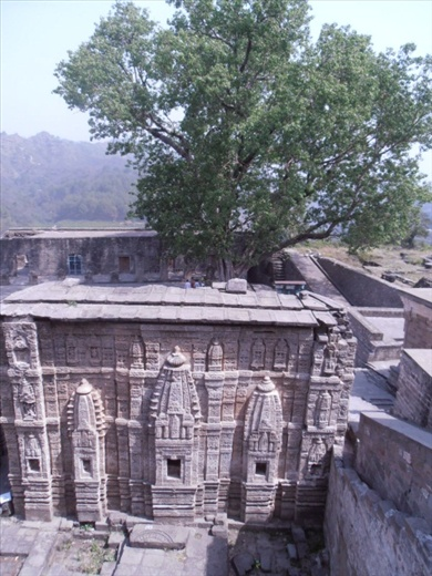 Kangra Fort, the remains of a temple. Very intricate carving.