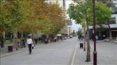 Hay Street looking the other way, a typical leafy, park-filled scene in Perth.: by flyted, Views[334]