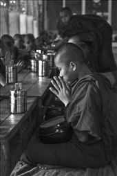 A novice monk prays before the midday meal, Kalaywa Tawya Monastery, Yangon.: by fosterfoto, Views[670]