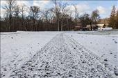Snow Tracks : by foto_genic, Views[160]