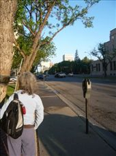 A street in Regina, too early for any action: by francesanddavid, Views[210]