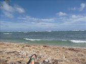 the best view... from lying on the beach... : by freedom-sparkles, Views[150]