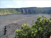 Kilauea iki trail in the sunlight!: by freedom-sparkles, Views[94]