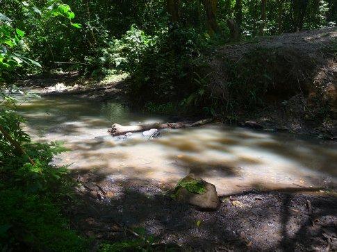 Grim looking water.... Definately needs blessings....