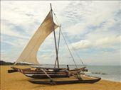 Tradtional fishing boat, Negombo: by freespirit5, Views[1002]
