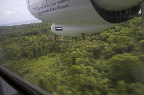 the jungle canopy from small aircraft